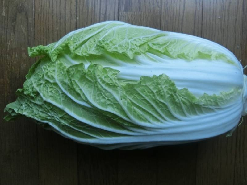 Chinese cabbage - Crops - Districts / Prefectures - 1st picture/image