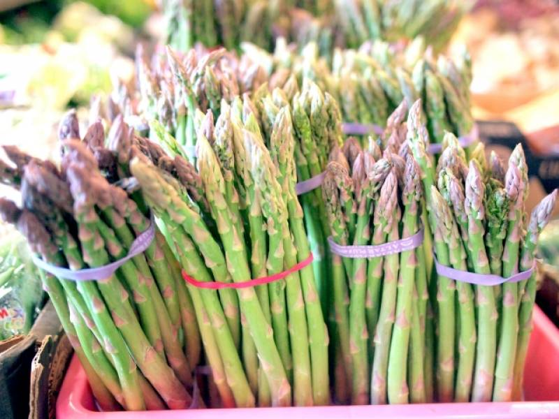 Asparagus - Crops - Overview - 2nd picture/image