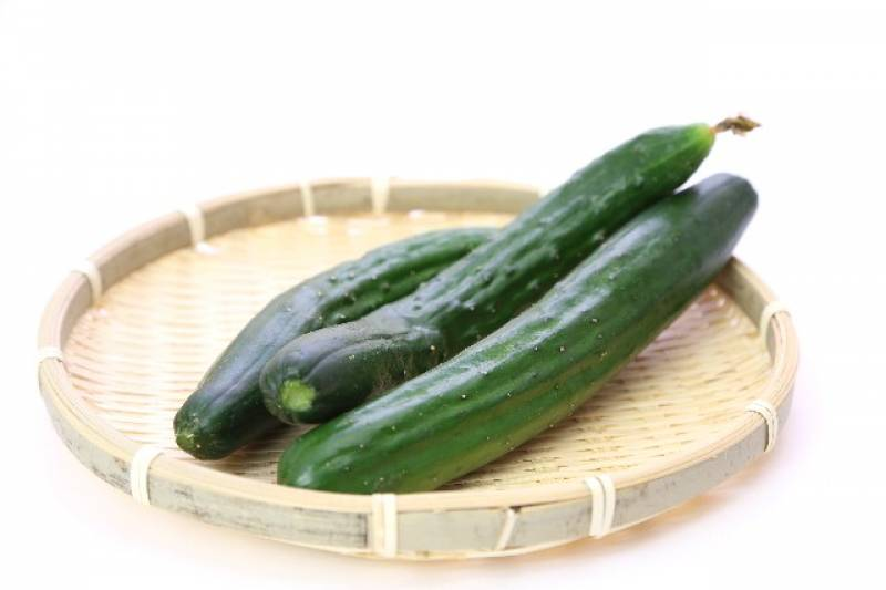 Cucumber - Crops - Nutrients - 1st picture/image