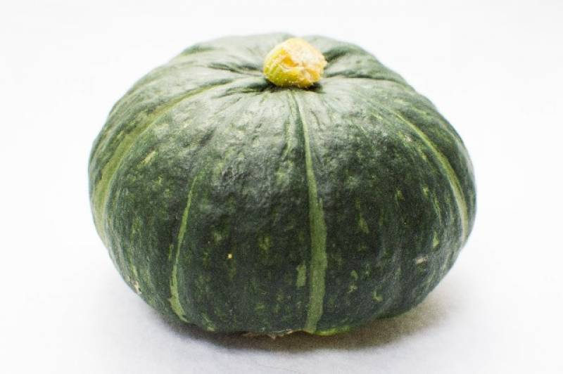 Akahime kabocha - Crops - Overview - 1st picture/image