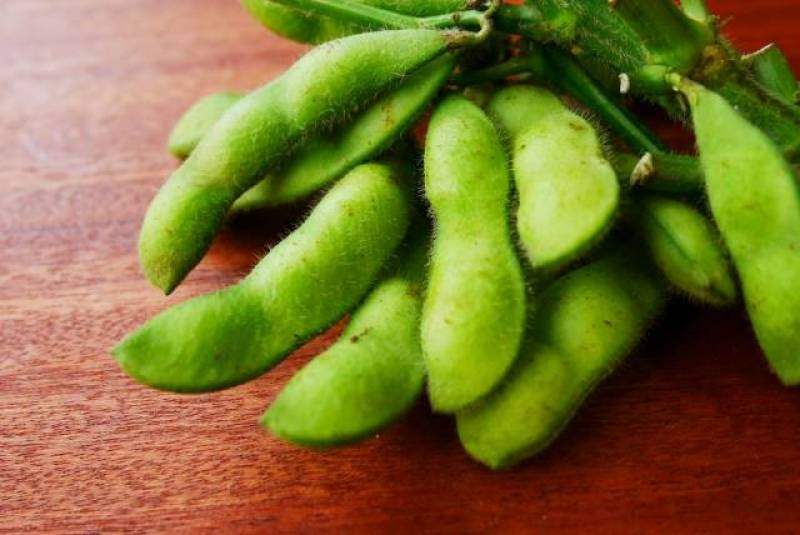 Green soybean - Crops - Nutrients - 1st picture/image