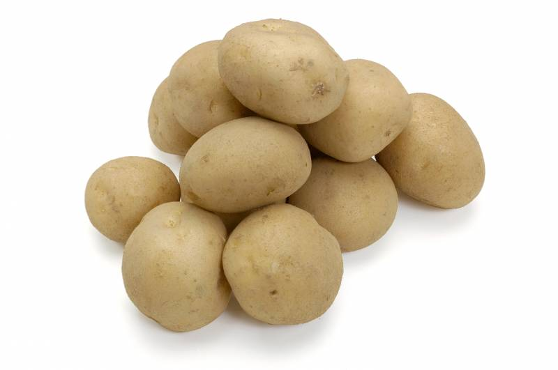 Potato - Crops - Agriculture - 1st picture/image