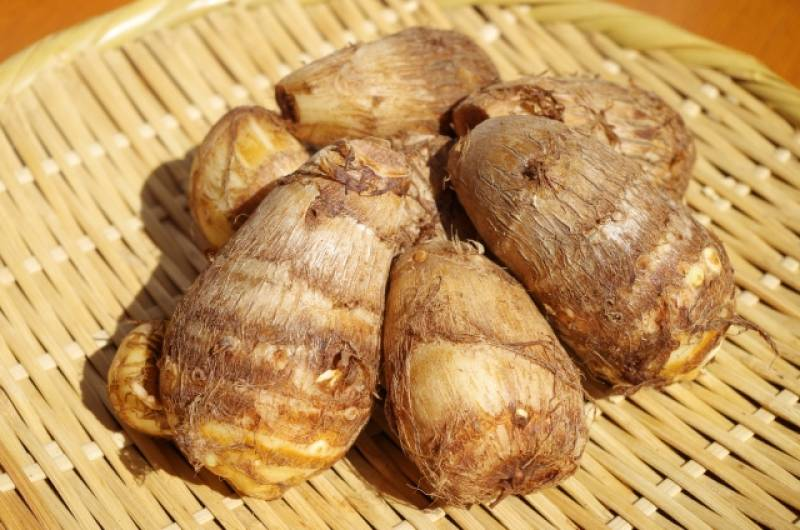 Taro - Crops - Districts / Prefectures - 1st picture/image