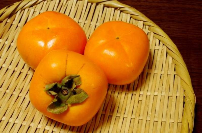 Persimmon - Crops - Seasons - 1st picture/image