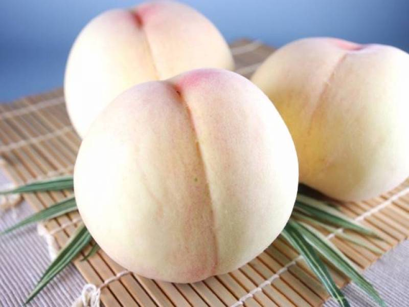 Peach - Crops - Agriculture - 1st picture/image