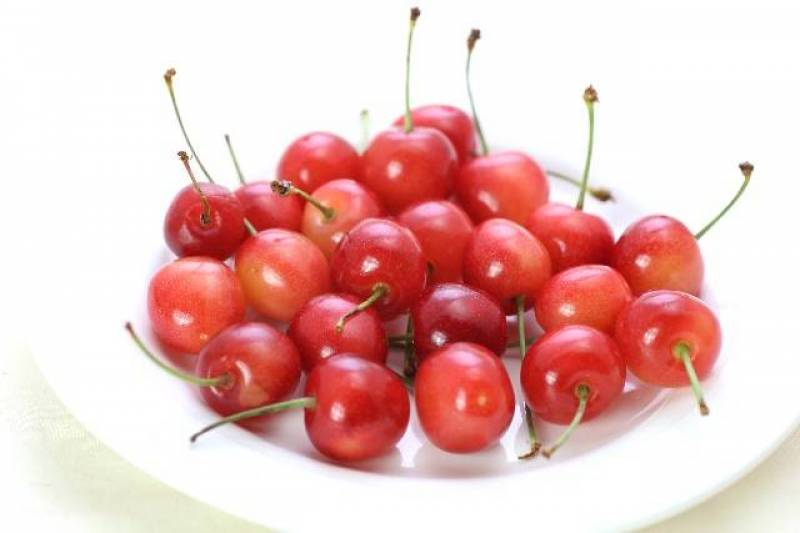 Cherry - Crops - Nutrients - 1st picture/image