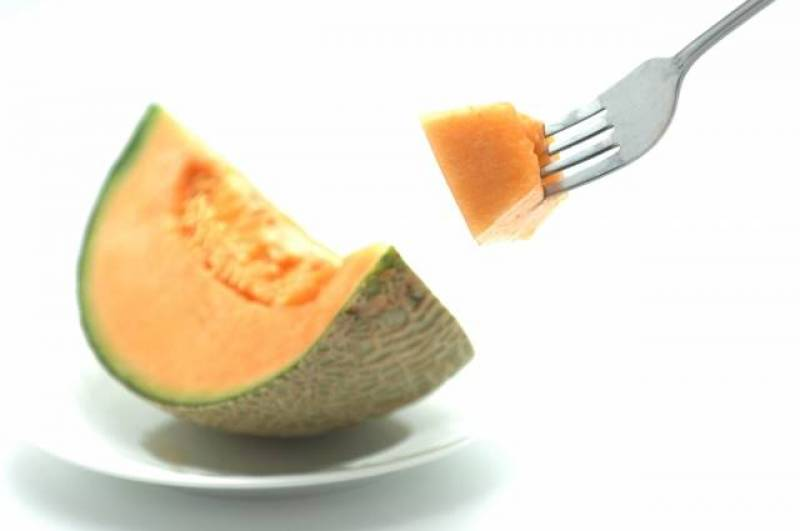 Melon - Crops - Districts / Prefectures - 1st picture/image