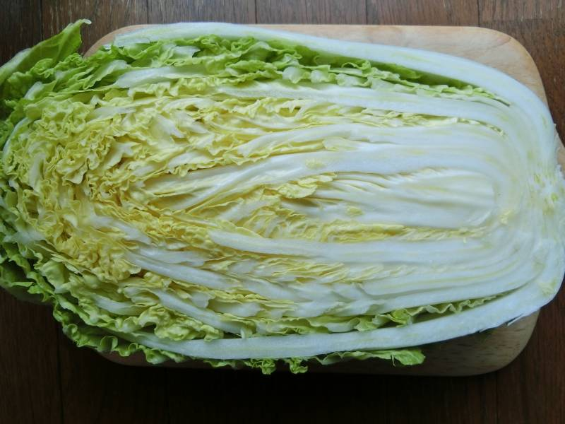 Summer hakusai - Chinese cabbage's Cultivars/Varieties - 2nd picture/image