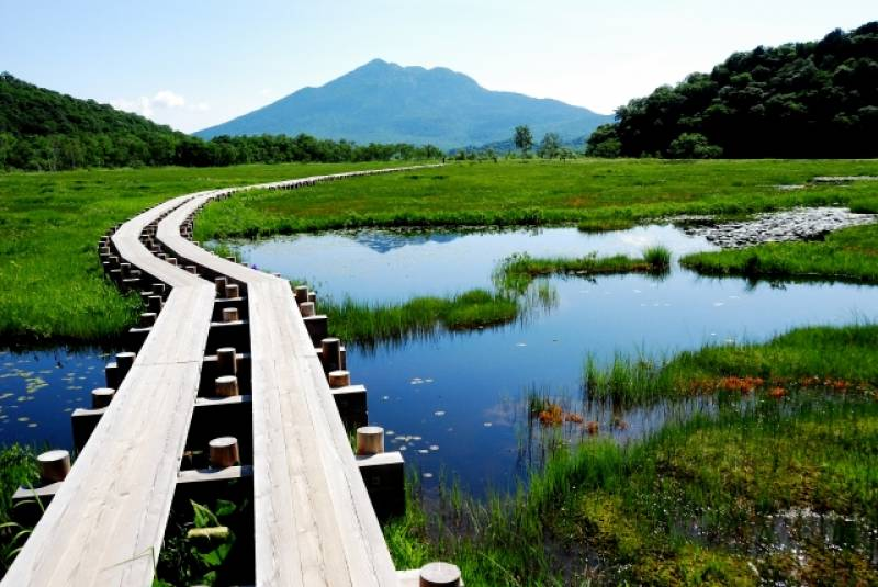 Gunma-ken - Districts / Prefectures - Oze - famous beatiful hiking spot - 2nd picture/image
