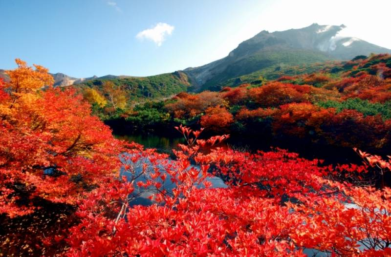 Tochigi-ken - Districts / Prefectures - Mt. Chausu - beatiful autumn leaves mountain - 1st picture/image
